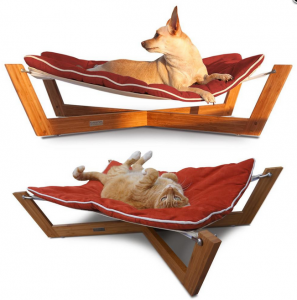 7 raised dog bed options to make your pet feel like royalty